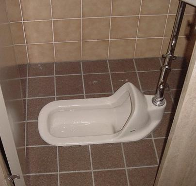 A Toto Japanese Style Toilet The Toilet  Learn Language At Page