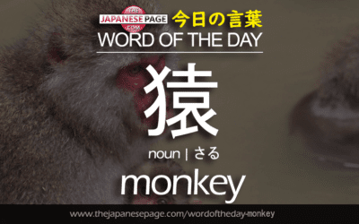 Beginner Word of the Day – 猿 [monkey]