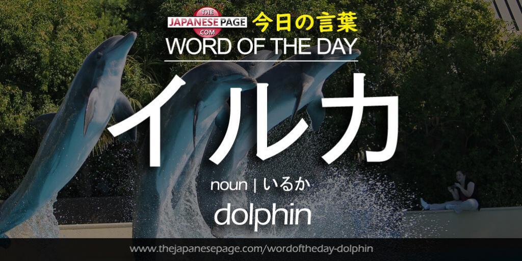 The Japanese Page Word of The Day - Dolphin