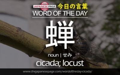 Beginner Word of the Day – 蝉 [cicada; locust]