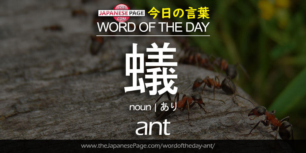 Beginner Word of the Day – 蟻 [ant]
