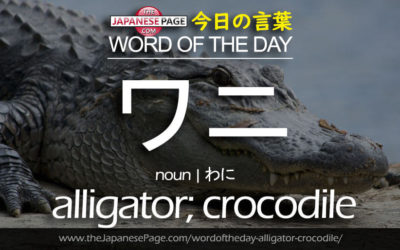 Beginner Word of the Day – ワニ [alligator; crocodile]